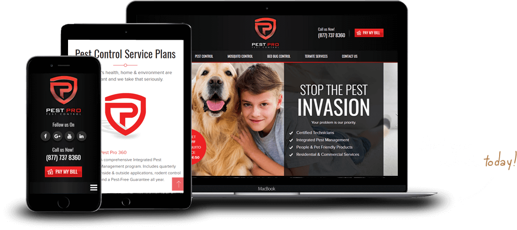 Houston Web Design - WordPress Website Design - Buer
